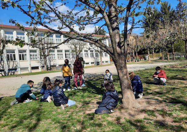 scuola primaria galileo galilei varese
