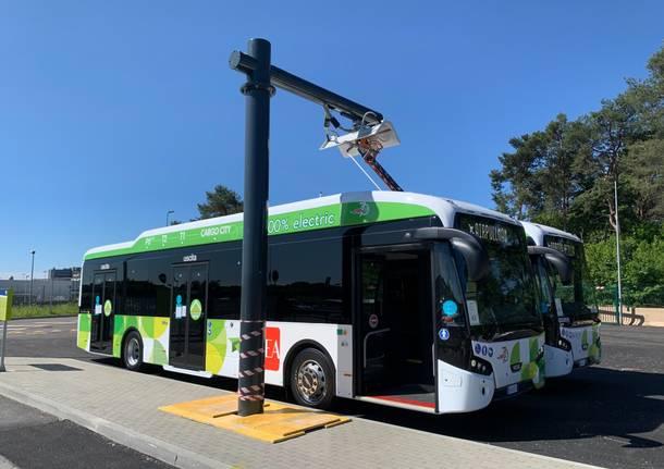Autobus elettrici Malpensa