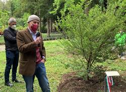 Deposizione dell'albero al premio Salvatore Furia 2020