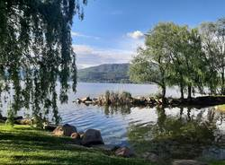 Il lago a Cazzago Brabbia