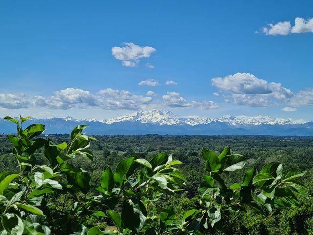 Il Monte Rosa dal belvedere di Tornavento