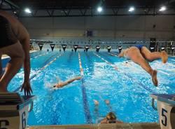 Nuotatori del Carroccio: impegni per agonisti, master, fondisti e nuoto subacqueo