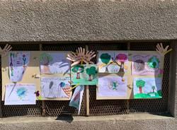 Scuola elementare Gemonio green school nuovi alberi