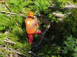 I cacciatori al lavoro per risistemare i sentieri a Brinzio