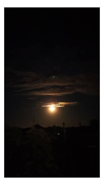 La luna delle rose....