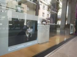 """Fotografica...mente"" mostra di ""Pari&Dispari"" Legnano"