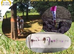 Il Bosco dei Curiosi campo estivo 2021