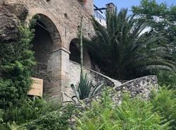 L'agave di Santa Caterina del Sasso è fiorito