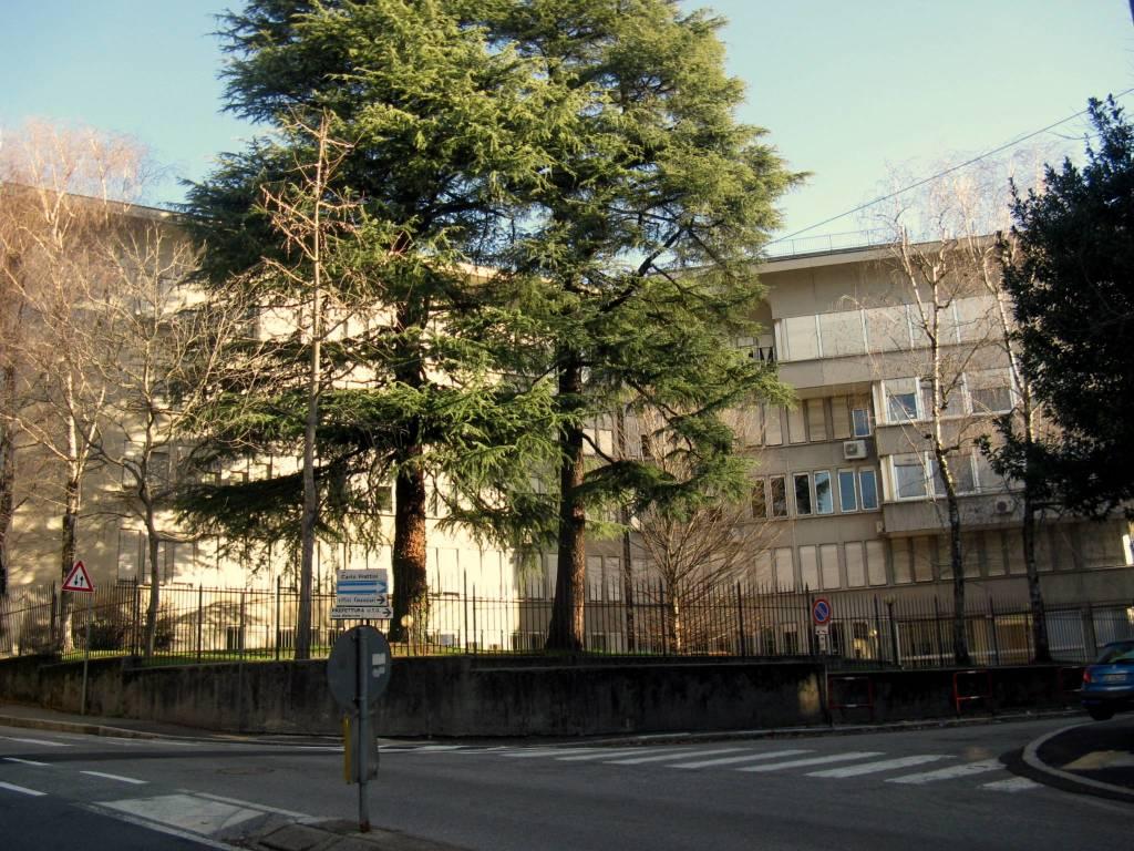 Metamorfosi urbana: dalla casa del sole al palazzo delle tasse