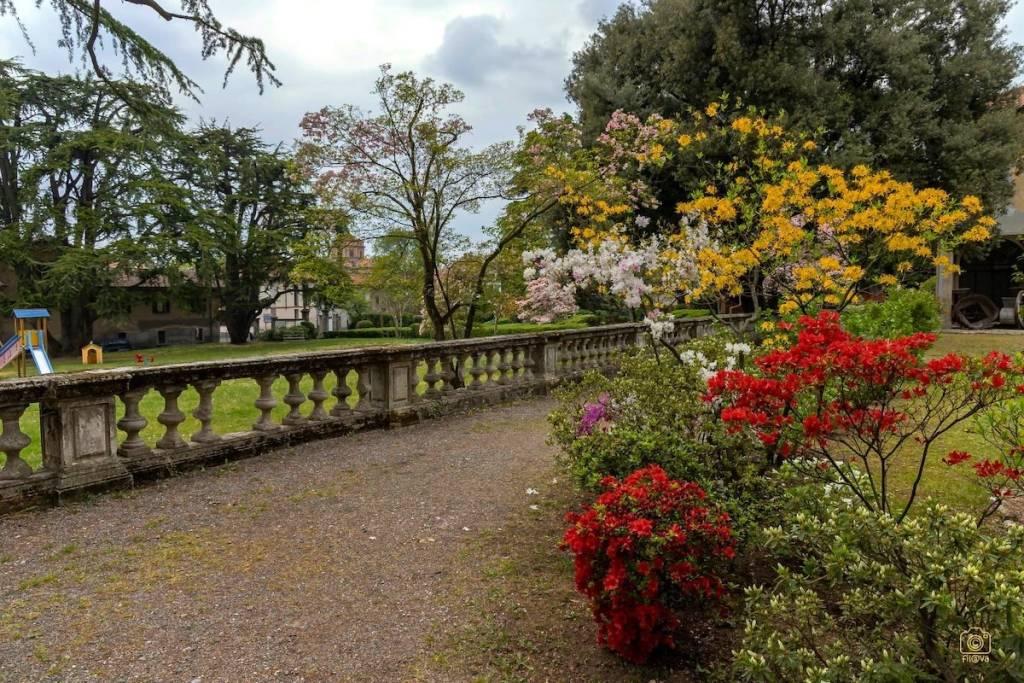 Tradate, parco di Villa Inzoli -foto di Filippo Impieri