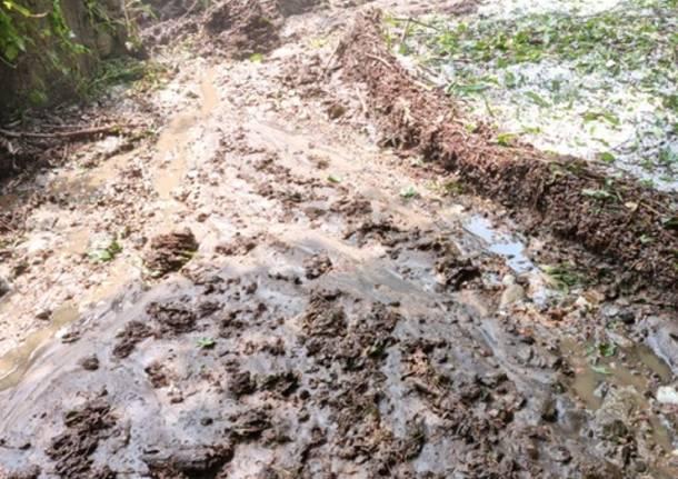 Maltempo in Valcuvia, strade invase dal fango
