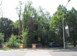 Degrado ex discarica di via Menotti a Legnano