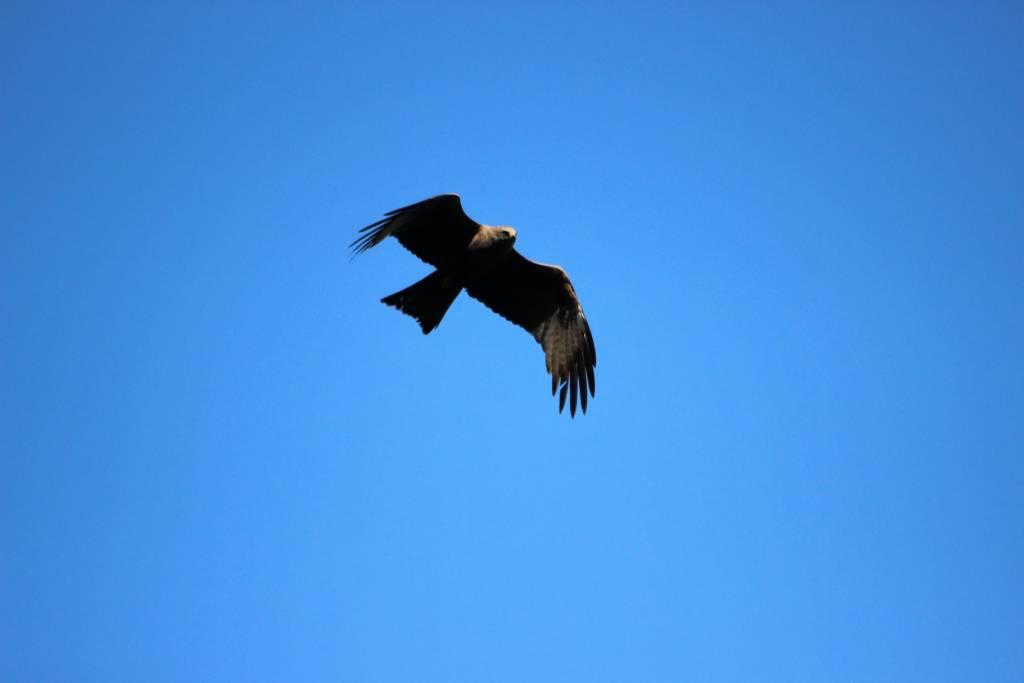 In volo sul Lago di Comabbio