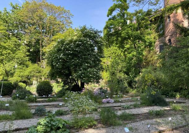 orto botanico Lombardia