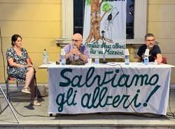 Tradate - Serata pubblica per salvare gli alberi di piazza Mazzini