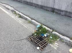 Zanzare, erbacce e rifiuti abbandonati a Legnano