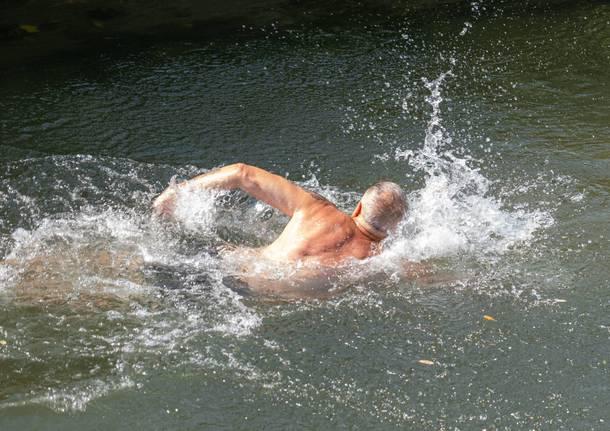 A Ferragosto, un tuffo e una nuotata nell'Olona di Parabiago