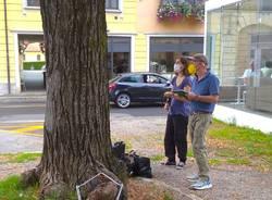 Tradate - Daniele Zanzi al lavoro sugli alberi di piazza Mazzini