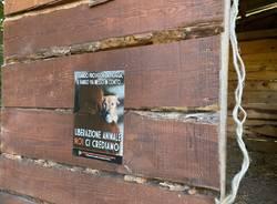 Raid animalista a Binago e Tradate