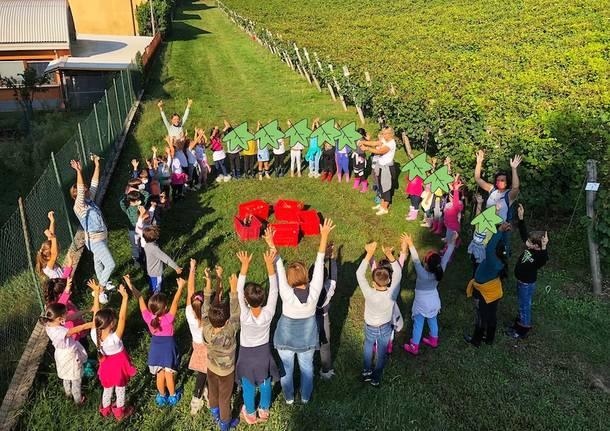 Dalla scuola alla vigna, mattinata speciale per gli alunni della scuola primaria di Casciago