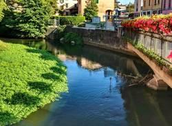 Il fiume Bardello a Besozzo