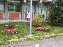 Al Liceo Legnani di Saronno due targhe in memoria delle professoresse Cosulich e Giuffrida