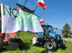Germignaga - Protesta no green pass