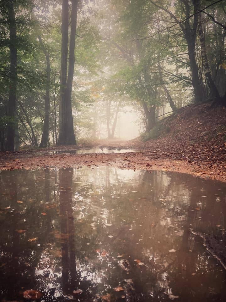 Primi segnali d'autunno