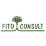 Fito Consult