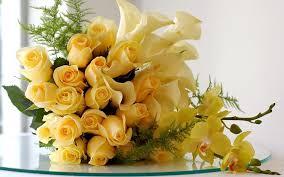 fiorigialli